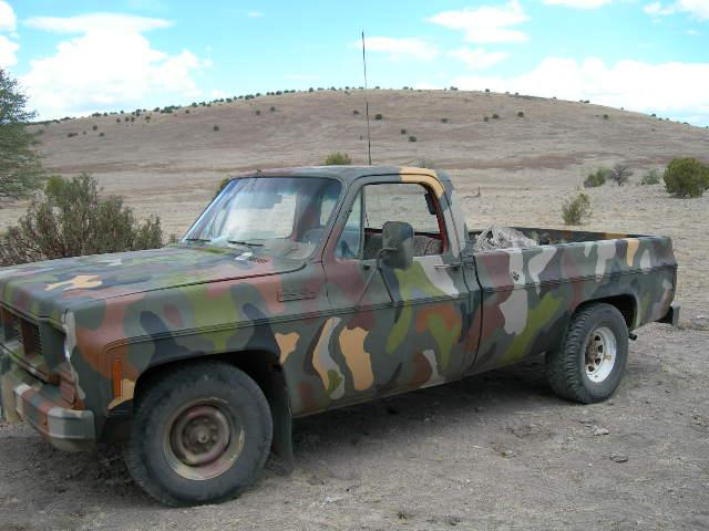 Camo Tan Car Paint